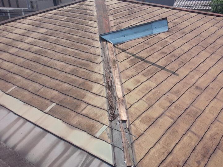 江戸川区 屋根