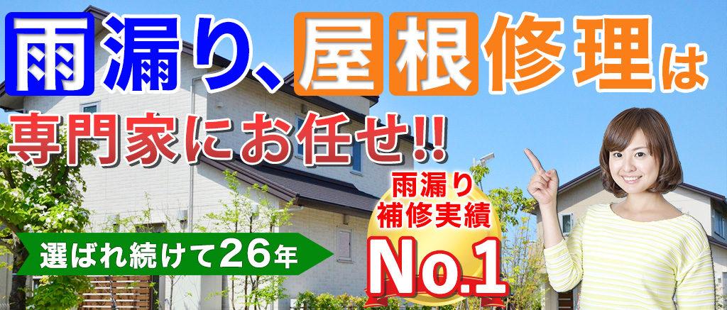 雨漏り、屋根修理は専門家にお任せ!